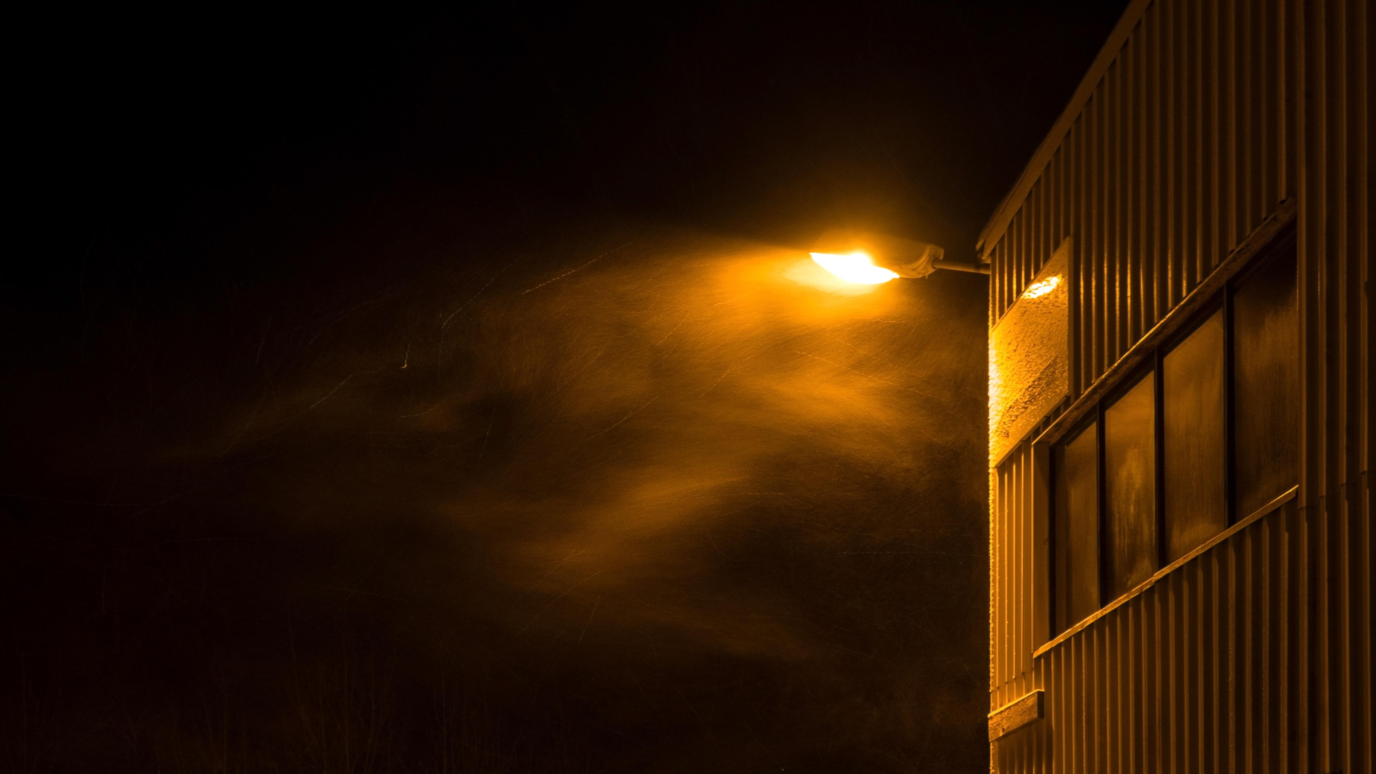 lamplight1.jpg